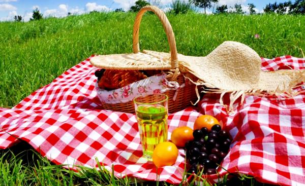 piknik-na-prirode